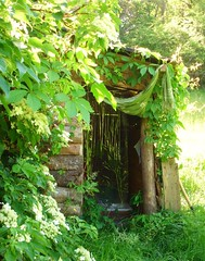 Compost toilet at the cabin (hardworkinghippy) Tags: permaculture compostingtoilet woodencabin cabininthewoods humanure dreamcabin offgridcabin permaculturefrance