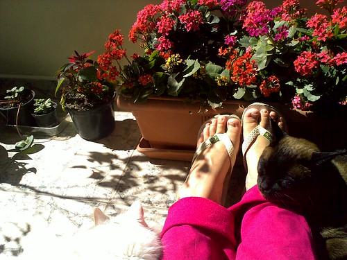 Curtindo um sol no fim de semana