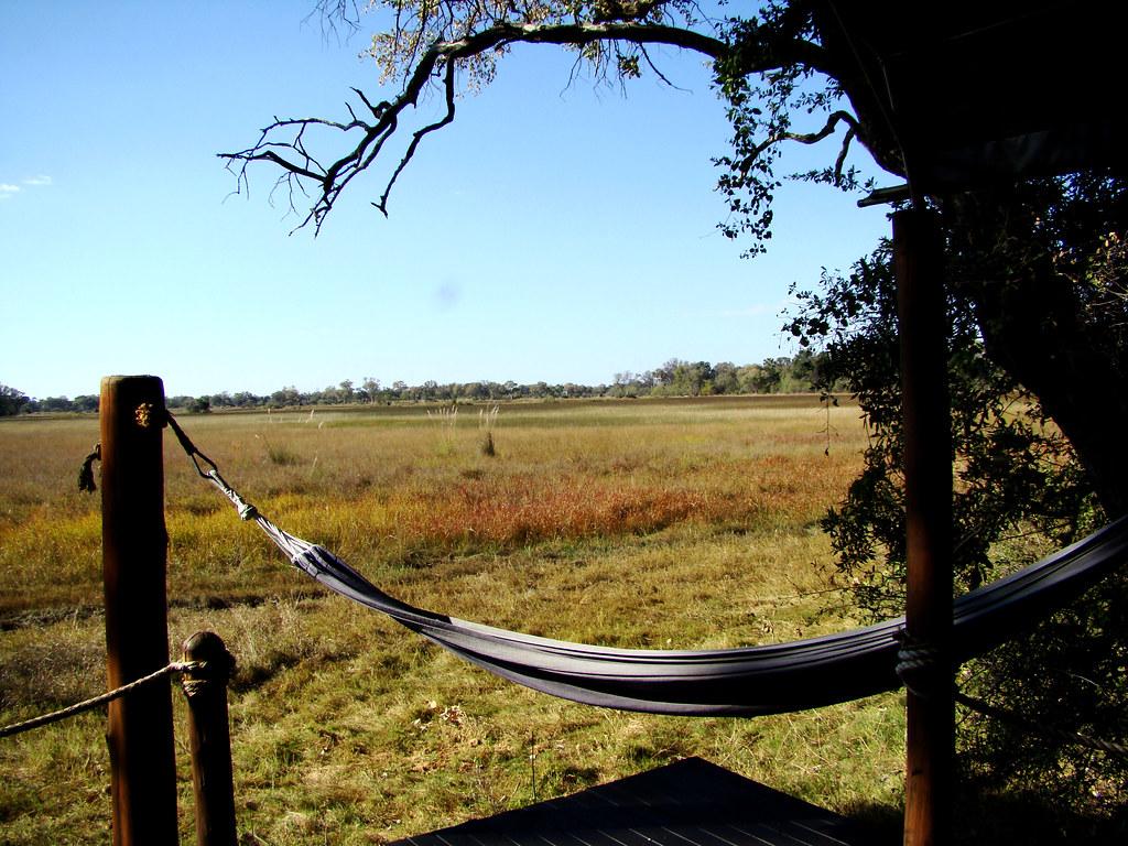 DSC07353-Stanley Camp hammock