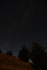 Perseids... Or Not (John.Hudson) Tags: trees monument night canon stars long exposure tokina pro f4 1224 perseids 200am 40d