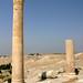 JO04 7056 Upper Byzantine Church (ruins), Pella