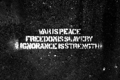 070/365 :: War Is Peace (matthileo) Tags: blackandwhite bw art graffiti book words paint michiganstateuniversity quote michigan text msu books quotes 1984 orwell georgeorwell eastlansing bigbrother michiganstate rhetoric freedomisslavery project365 ingsoc warispeace ignoranceisstrength nineteeneightfour msugraffiti