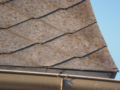 Close-up Asbestos-Cement Roof Shingles (Asbestorama) Tags: roof house building home tile apartment inspection cement shingle environmental safety fiber residential survey hazard acm roofing asbest dwelling asbestos chrysotile asbesto amiante amianto transite