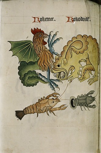 Cockatrice and Crocodile. Dragon with human head in mouth. Crayfish.