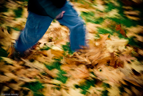 kicking leaves