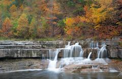 Lower Falls (Kyle Rollins) Tags: longexposure newyork fall water leaves upstate fingerlakes