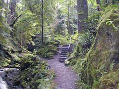Puck's Glen (annie in alba) Tags: scotland argyll glen pucks