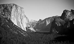 (bex finch) Tags: california yosemite sierras elcapitan sierranevada cathedralrocks tunnelview granitemonolith westernsierra rte41 halfdizzome