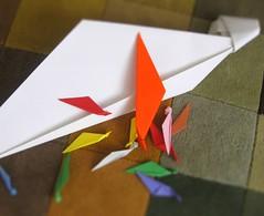 Sycamore Origami 2