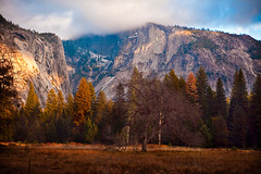 Fall Colors at Yosemite (Megatrond) Tags: california autumn sunset leaves sunshine fog fallcolors yosemite granite yosemitenationalpark yosemitevalley canonef24105mmf4lis scragglytree canon5dmkii