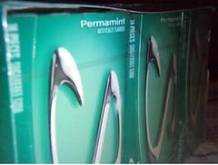Permamint Gum