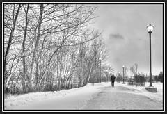 Anonymat (Sous l'Oeil de Sylvie) Tags: morning trees winter blackandwhite snow men noiretblanc hiver stgeorges qubec promenade neige arbre sentier hdr marcheur homme lampadaire matin beauce anonyme promeneur hdraddicted pentaxk7 ilepozer