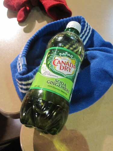 Canada Dry Ginger Ale at the food court - $3