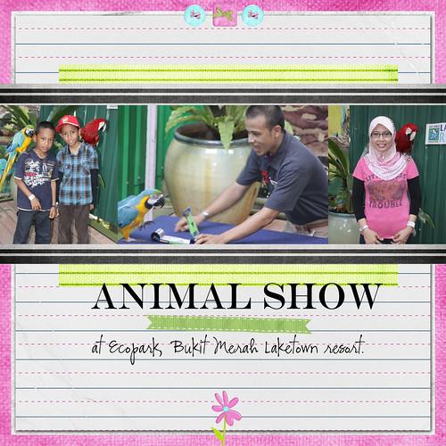 animal*show