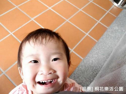 苗栗樂活桐花公園040