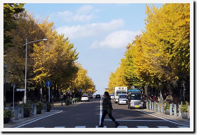 20101127_144713_横浜_日本大通り
