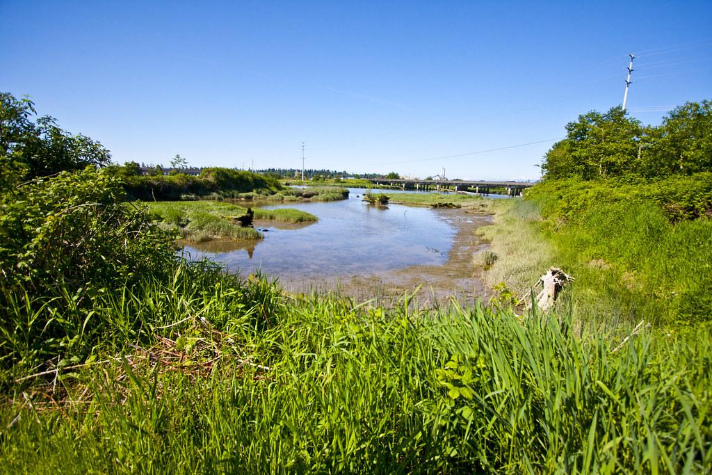 Union Slough Saltmarsh and Habitat Restoration Project