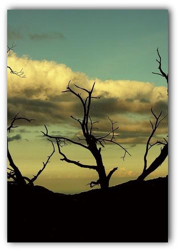 Porteurs de nuages