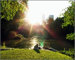 "Central Park ""Dog in the Sun"" (Tony Fischer Photography) Tags: park newyorkcity sunset dog sun lake ny newyork reflection green pond shine centralpark sparkle bigpond estremit"