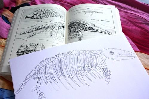 Sprite's fossil sketch