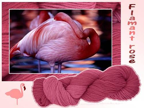 Flamant rose par vous