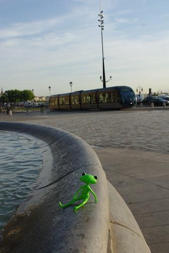 [Wonder Frog Wanda] Grenouille voit la vie en vert 3744977607_6146f22e82