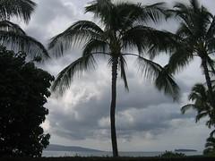 Palms at Makena Cove (stu_macgoo) Tags: ocean clouds palms maui molokini kahoolawe makenacove