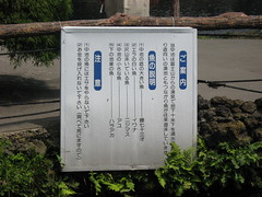 090818,忍野八海