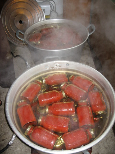 how to canning tomatoes for homemade tomato sauce