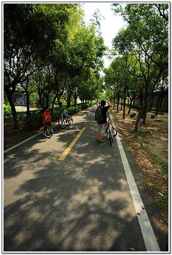 東豐自行車3