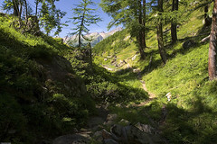In Ltschental (Pavel Vanik) Tags: summer mountains alps nature canon eos schweiz switzerland suisse path alpen svizzera alpi wallis valais 30d ltschental 1755is abigfave