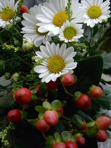 Flower-051