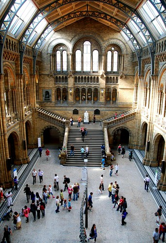 main entrance hall at the natural history museum, london