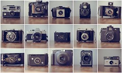 My Collection (It's my own invention) Tags: camera old vintage polaroid holga kodak chloe retro collection cameras brownie bellows instamatic