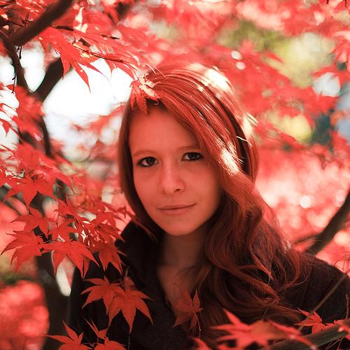 フリー画像| 人物写真| 女性ポートレイト| 白人女性| カエデ/もみじ| 赤色/レッド|      フリー素材|