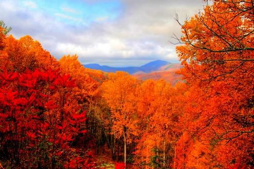 blue ridge mountains fall wallpaper - photo #4
