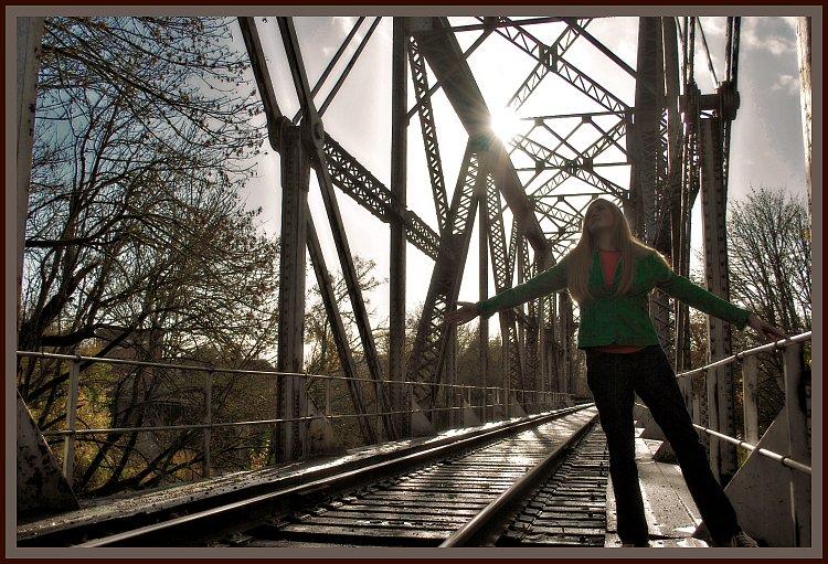 Ilex-Train Tracks