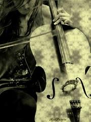 Exctasy (masparera ;-)) Tags: music note musica passion viola archi passione perstrada vibrazioni exctasy blackwhitephotos 100commentgroup bwlimage