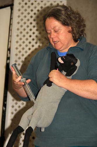 Dr. Kerr demonstrates how to give an intraperitoneal injection to a lamb or kid