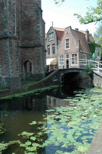 Canal bridge in Delft