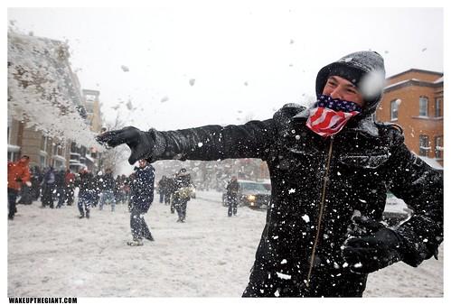 American Snowball