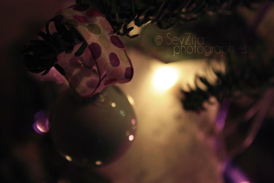Noël 2009 #2