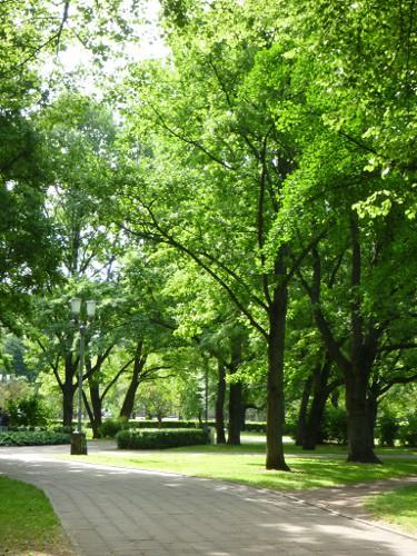 Riga park2