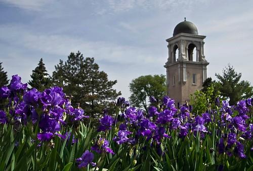 University of Denver scene
