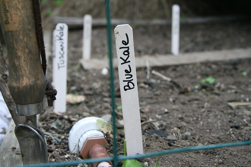 planting labels