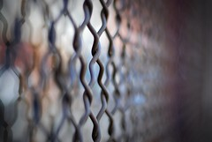 bokeh link fence (Will Montague) Tags: city reflection glass fence 50mm prime nikon bokeh neworleans security chainlink crime montague explored d80 willmontague