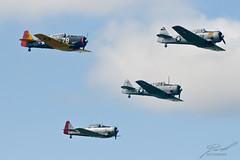 Four T-6 Texans
