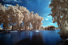 Cold summer day (FX-1988) Tags: park red summer cold ir israel day national infrared infra gan ramat r72 hory rm72