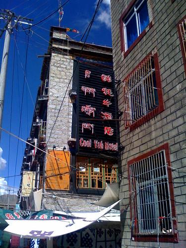 cool yak hotel