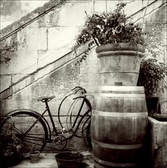 (zenog) Tags: france provence vaucluse saintrémy aug8 fujiacrosneopan100 fragmentsdunpassérecent